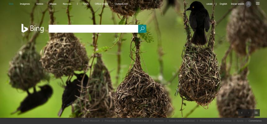 Uno de los más importantes buscadores alternativos a Google  es Bing