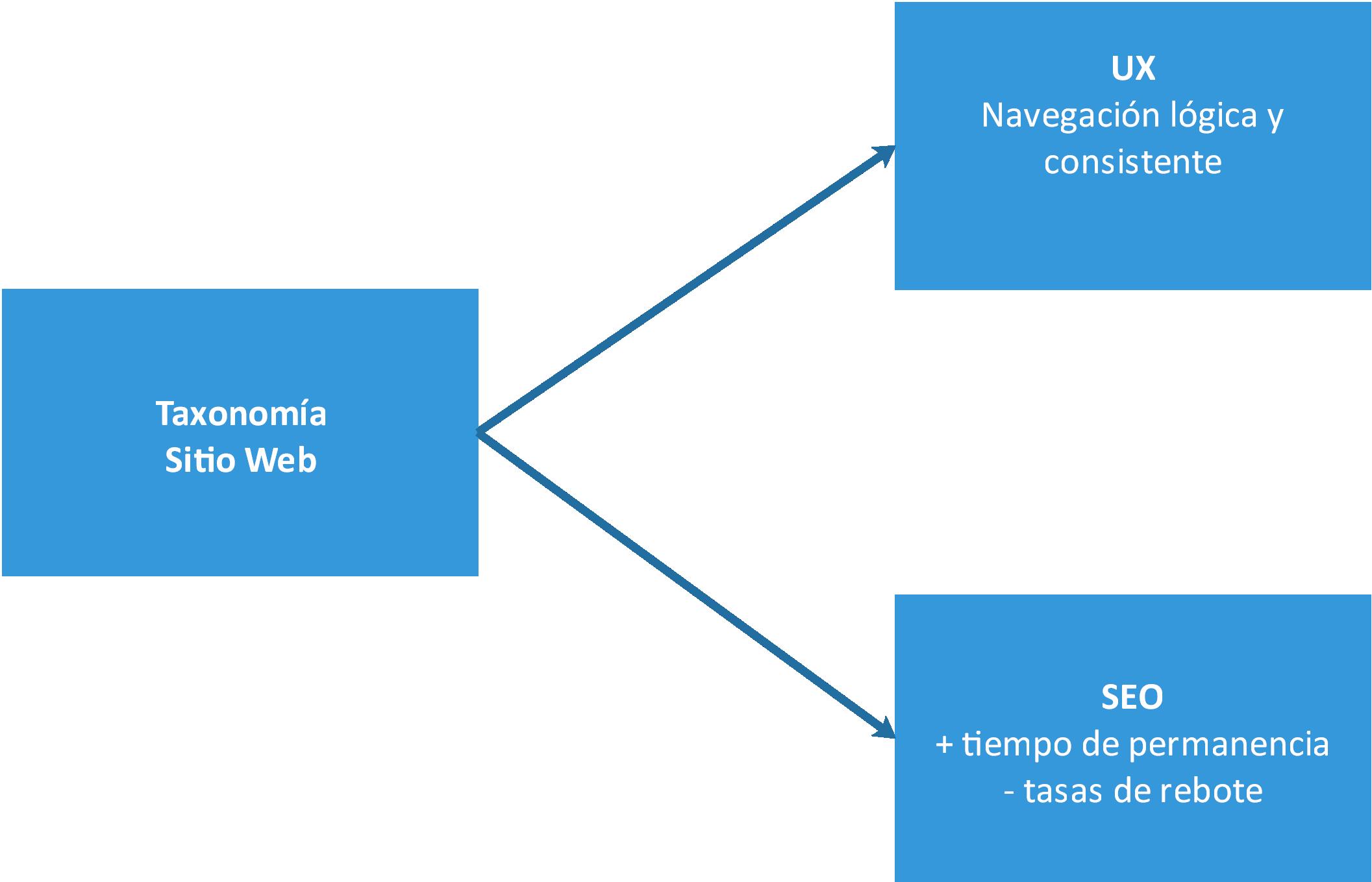 Qué Es Una Taxonomía Sus Componentes Y Cómo Se Aplica A