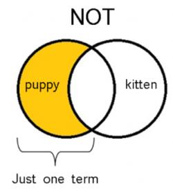 Diagrama de Venn: operador NOT