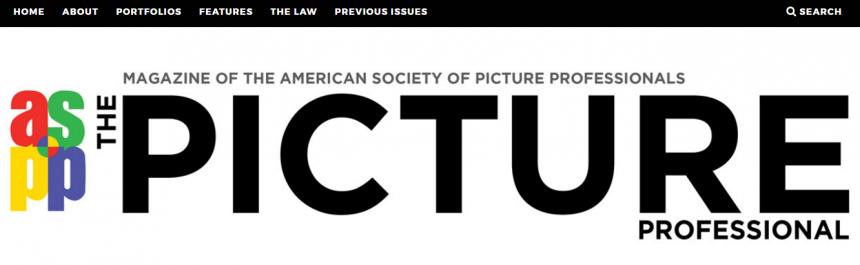Sitio web de The Picture Professional