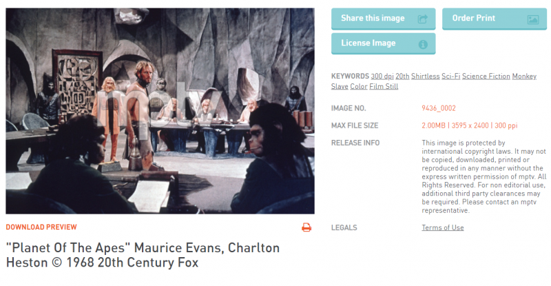 Motion Picture and Television Photo Archive