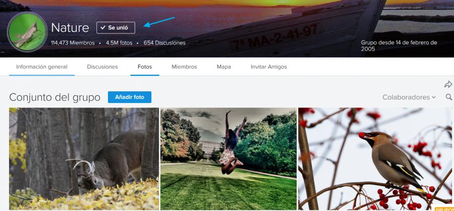 Grupos de fotografías en Flickr Nature